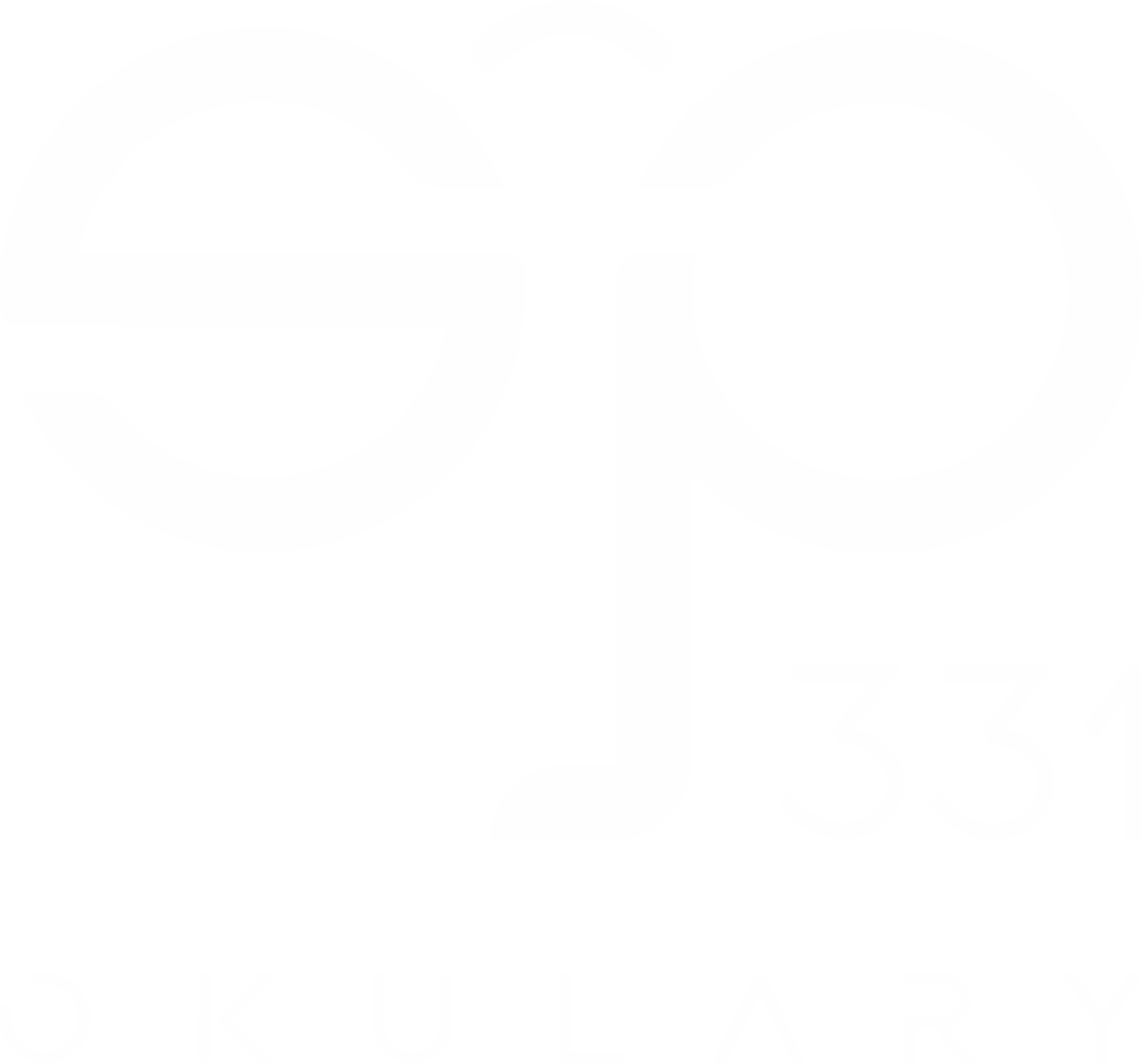 SP 331 OKULARY
